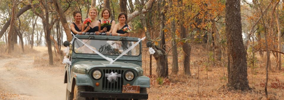 Wedding Safaris